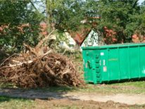 Image of a residential dumpster with yard waste in Orange County California.